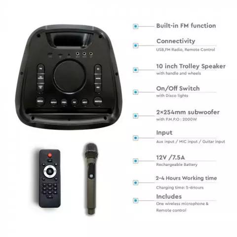 Punjivi zvučnik 100W s daljinskim upravljačem i mikrofonom TWS funkcija